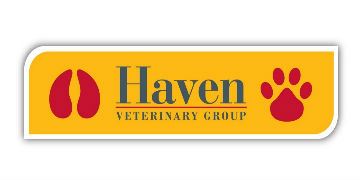 Haven Veterinary Group logo
