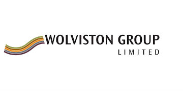 WOLVISTON GROUP LTD logo