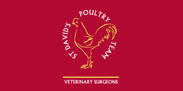 St David's Poultry Team Limited logo