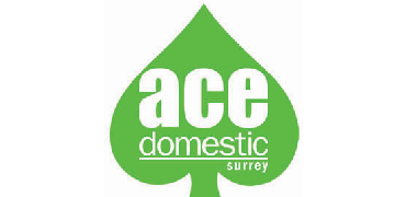 Ace Domestic Surrey Ltd logo