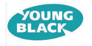 Young Black Industrial Stapling Ltd* logo